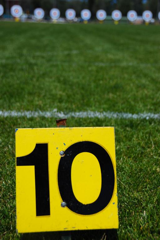 Saison sportive 2020 - Décisions du Comité Directeur de la FFTA